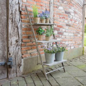plant ladder outside view 1