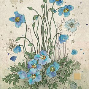 blue-meconopsis-greeting-card