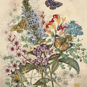 botanical-butterflies-greeting-card