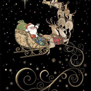 Santas Team - Bug Art Christmas Card