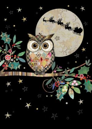 Chrismas Owl - MC049 by Bug Art