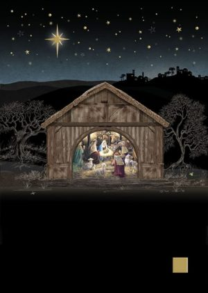 Nativity Stable - MC048 Bug Art by Jane Crowther