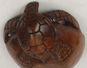 Detail view of the turtle head. 30 cm turtle bowls