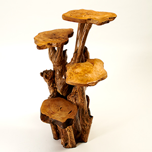 1 Metre Tall - 4 Tier Coffee Wood Tree Stands